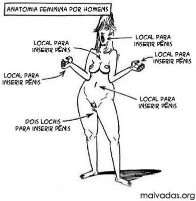 Anatomia feminina na visão dos homens